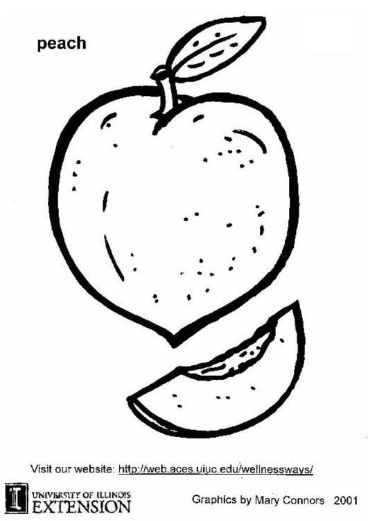 malvorlage pfirsich ausmalbild 5878