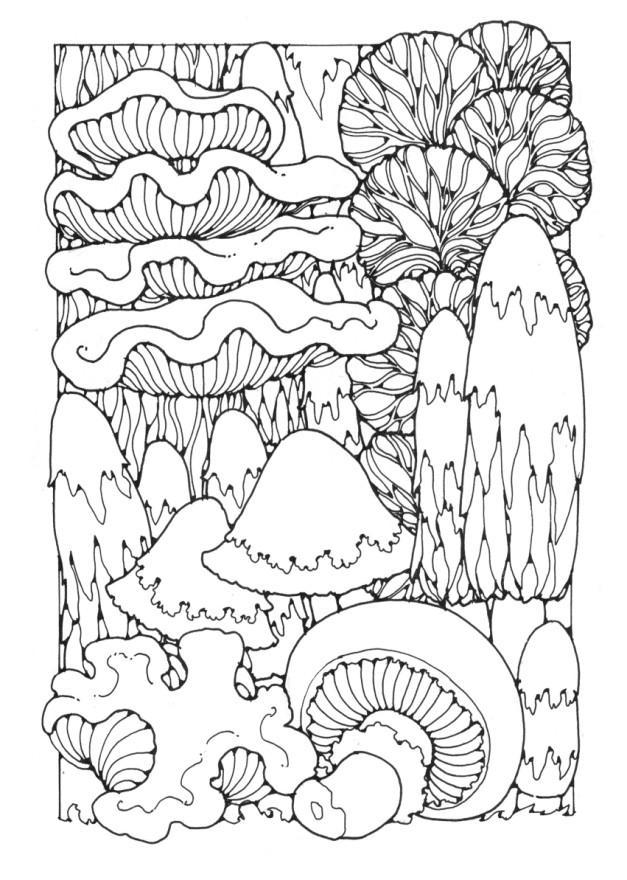 malvorlage pilze  kostenlose ausmalbilder zum ausdrucken