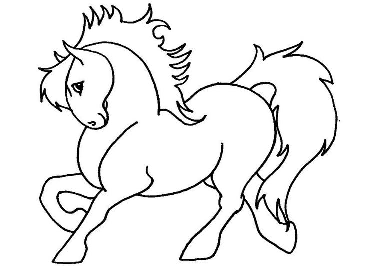 Malvorlage Pony | Ausmalbild 7132.
