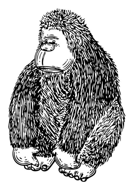 malvorlage puppe  gorilla  ausmalbild 17340