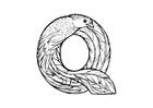 Malvorlage  q-quetzal