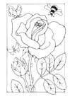 Malvorlage  Rose mit Biene und Schmetterling