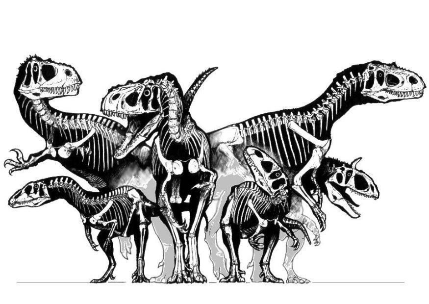 Malvorlagen Dinosaurier Skelett | My blog