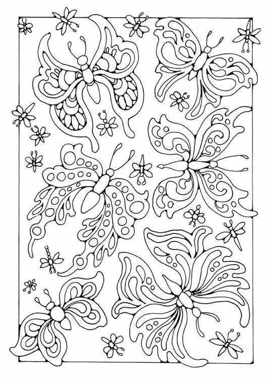 schmetterling malvorlage ausdrucken  x13 ein bild zeichnen