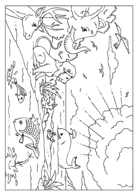 Malvorlage Schöpfung   Ausmalbild 25954.