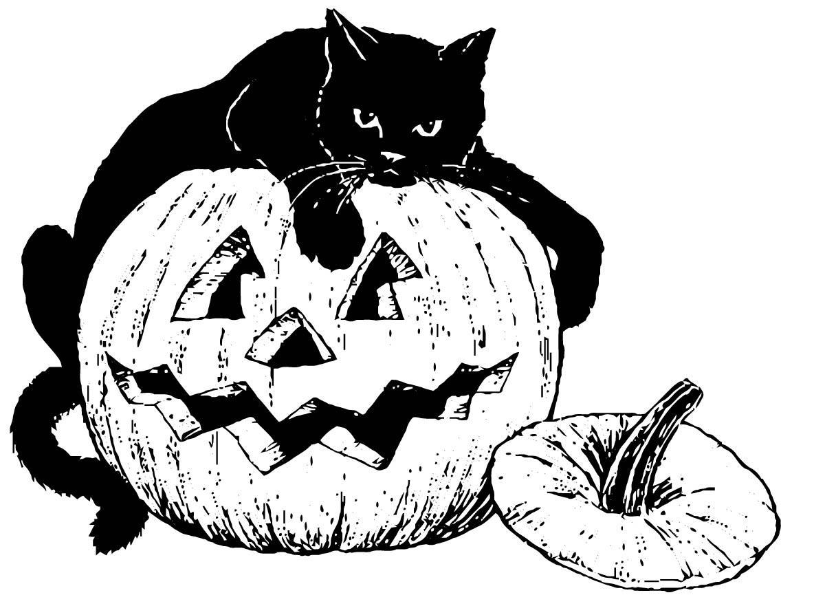 Malvorlage schwarze Katze auf Kürbis | Ausmalbild 16101.