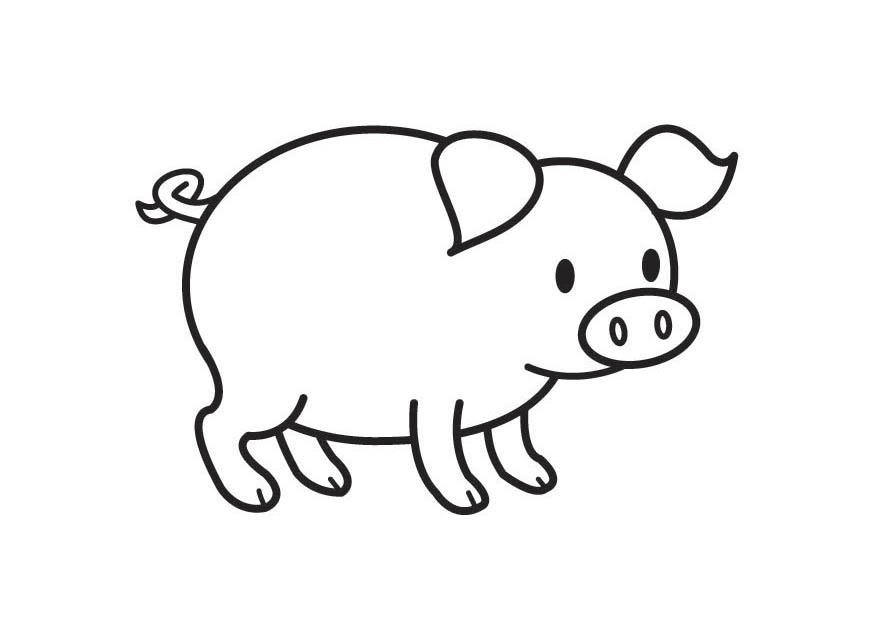 Malvorlage Schwein Ausmalbild 17789
