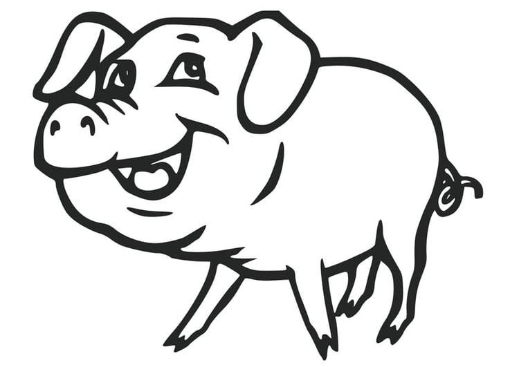 Malvorlage Schwein | Ausmalbild 17077.