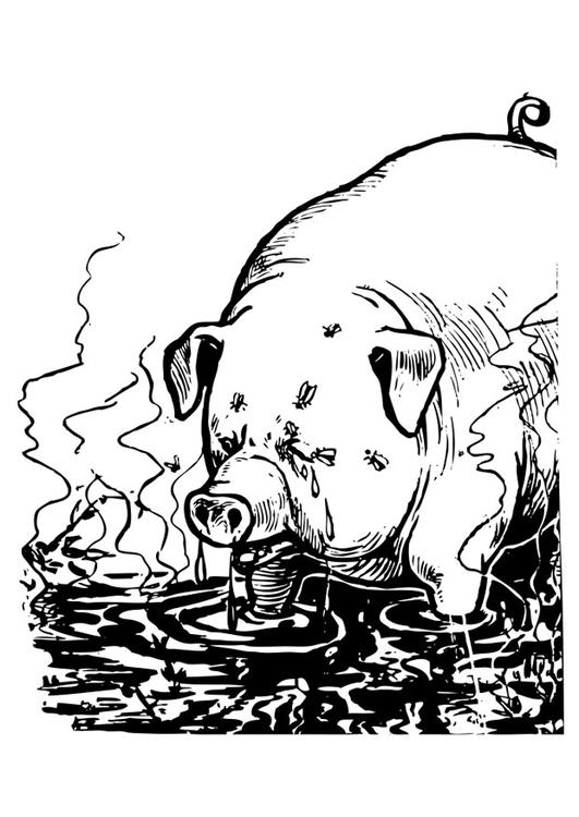 Malvorlage Schwein | Ausmalbild 25587.