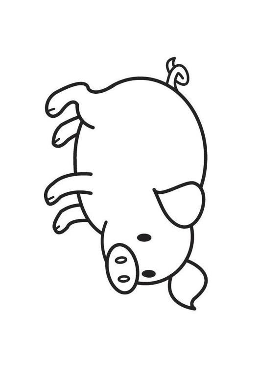 Malvorlage Schwein | Ausmalbild 17789.