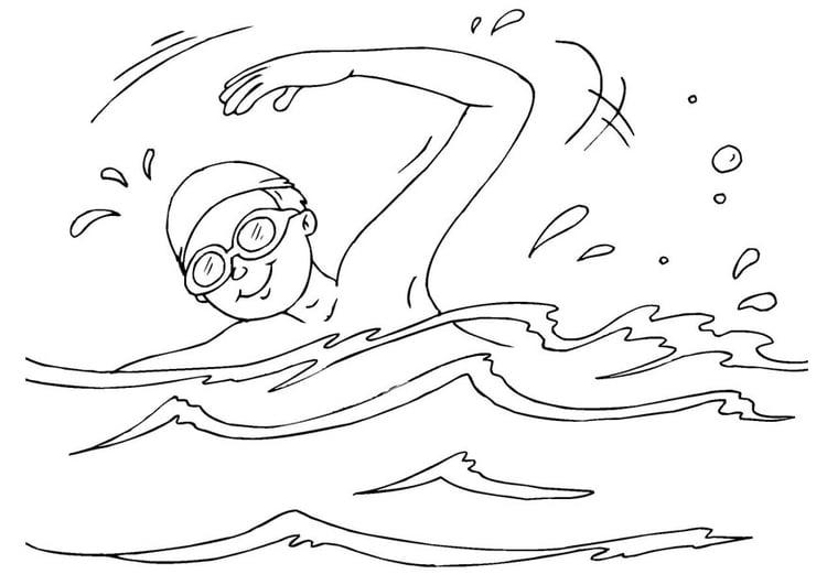 Malvorlage Schwimmen | Ausmalbild 26070.