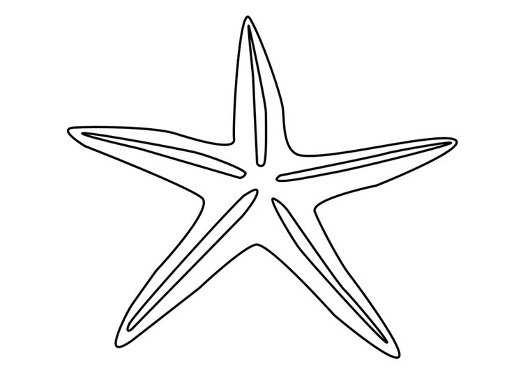 Malvorlage Seestern Ausmalbild 27185
