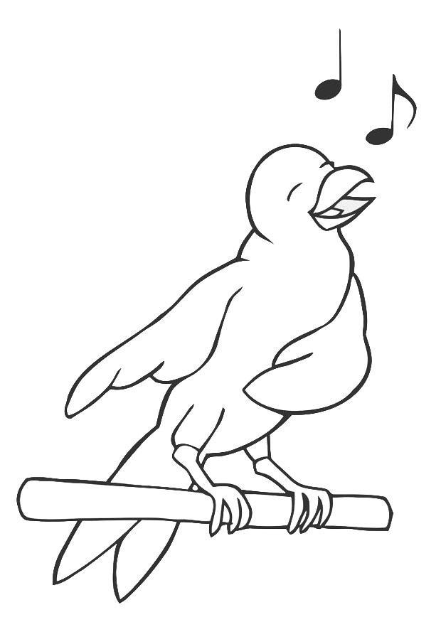 Charmant Blaue Vogel Malvorlagen Zeitgenössisch ...