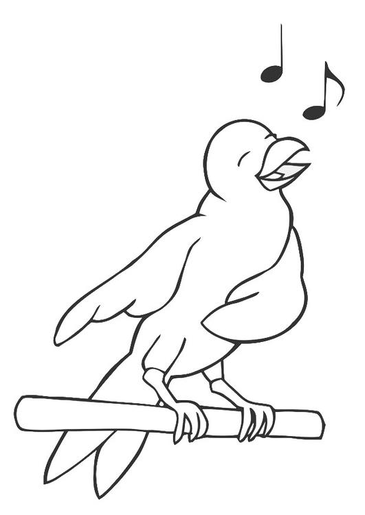 Malvorlage singender Vogel | Ausmalbild 19450.