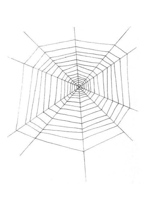 Malvorlage Spinnennetz | Ausmalbild 18990.