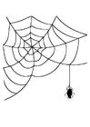 Malvorlage  Spinnenwebe mit Spinne
