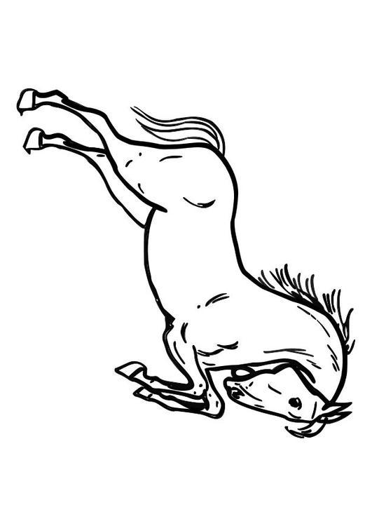 Malvorlage Springendes Pferd Ausmalbild 10362