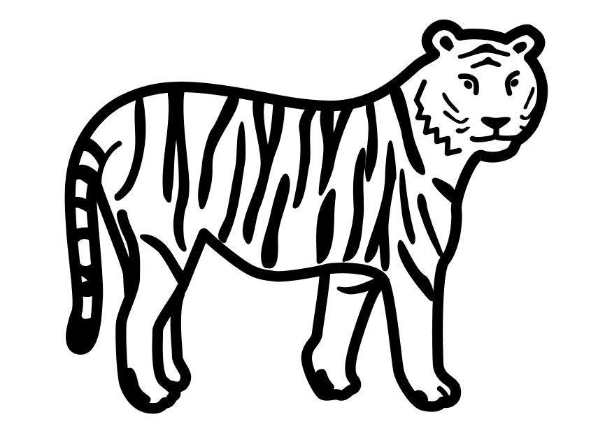 Malvorlage Stehender Tiger Ausmalbild 10491