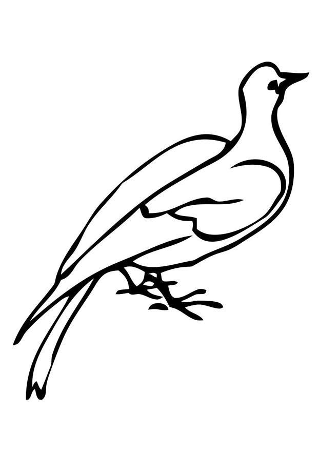 Tolle Heilige Geist Taube Malvorlagen Bilder - Ideen färben ...