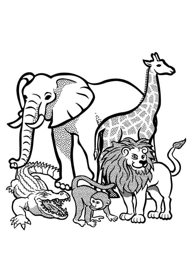Malvorlage Tiere In Der Wildnis Ausmalbild 29436