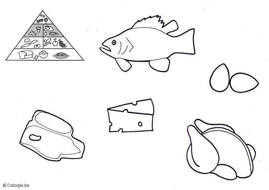Malvorlage Tierische Produkte Kostenlose Ausmalbilder Zum Ausdrucken Bild 5673