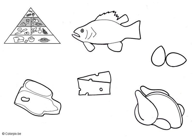 Malvorlage tierische Produkte | Ausmalbild 5673.