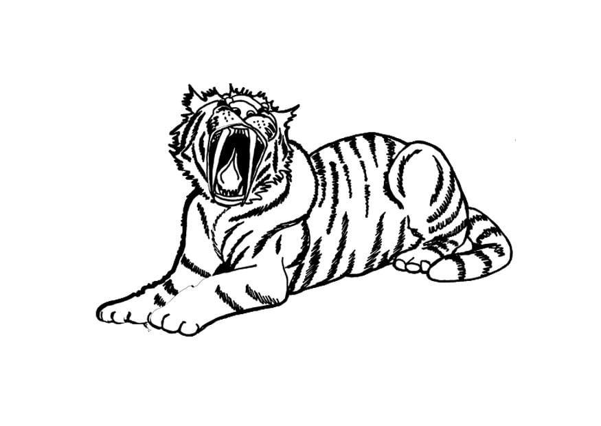 Malvorlage Tiger Ausmalbild 9695