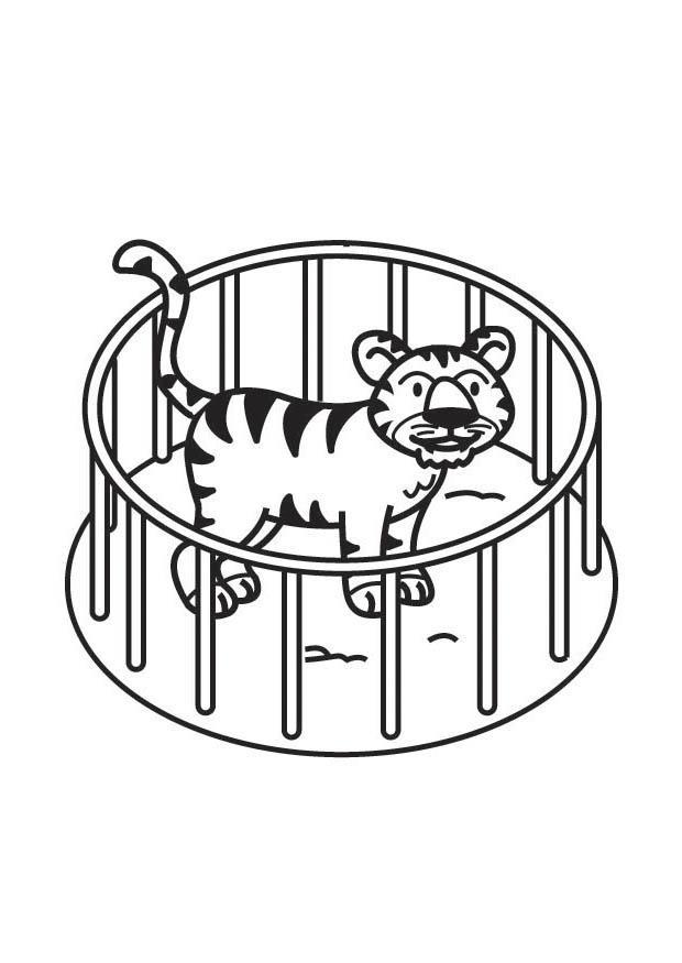 malvorlage tiger im käfig  kostenlose ausmalbilder zum