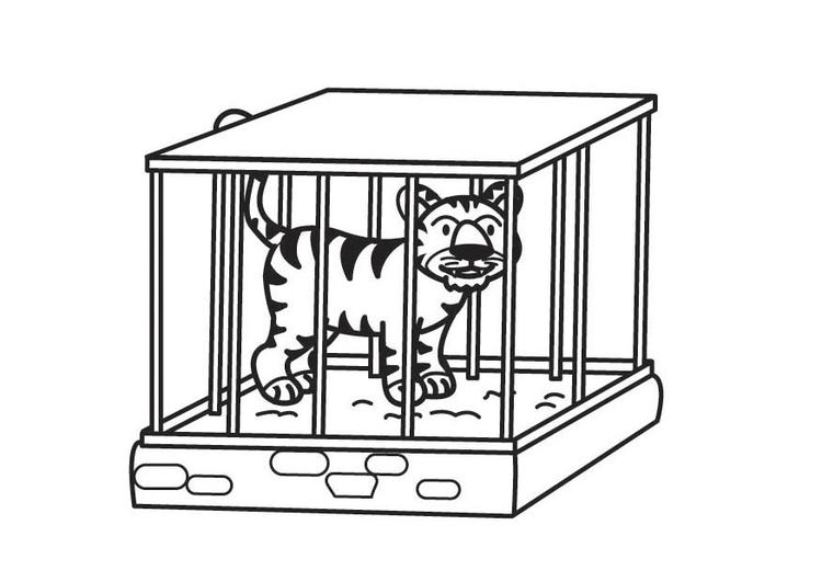 Malvorlage Tiger Im Kafig Kostenlose Ausmalbilder Zum Ausdrucken Bild 17709