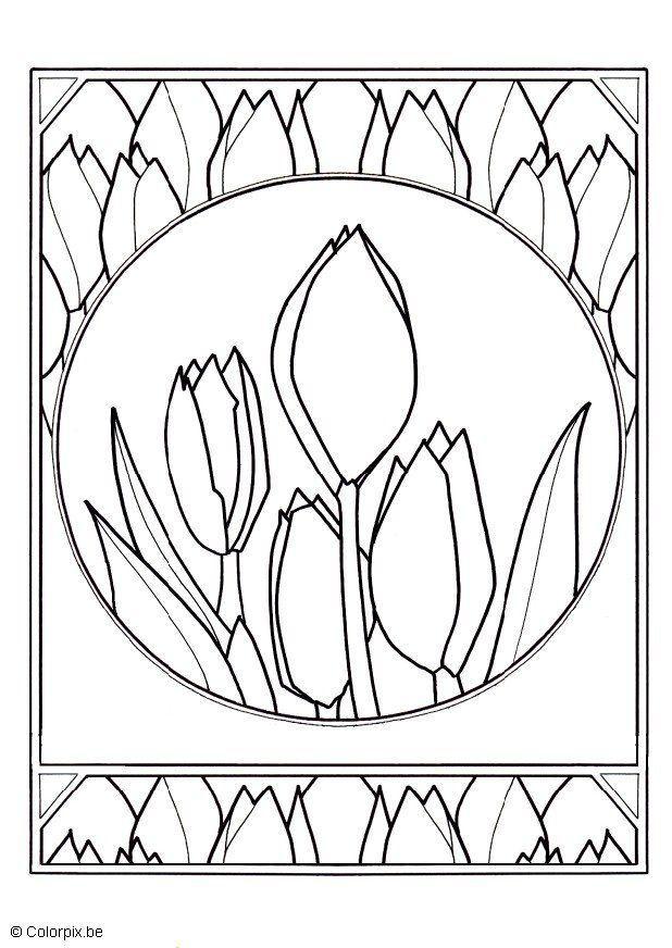 malvorlage tulpen - kostenlose ausmalbilder zum ausdrucken.