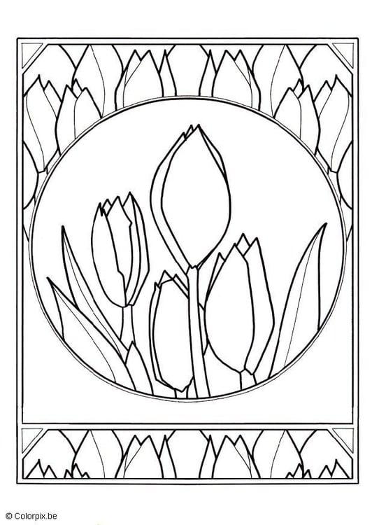 Malvorlage Tulpen Ausmalbild 11741
