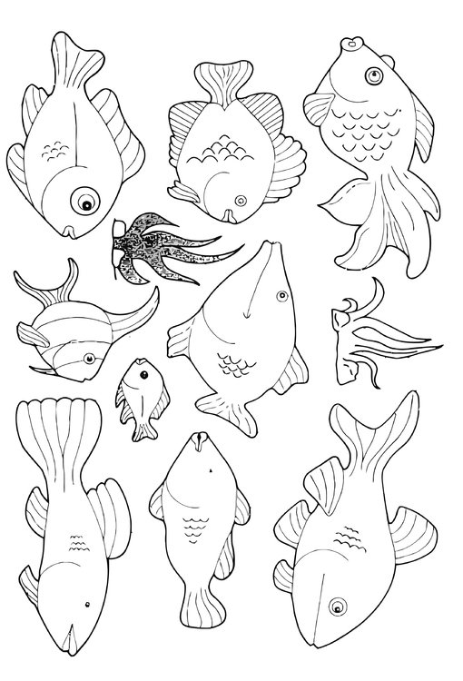 60 malvorlagen von fische  kostenlose ausmalbilder zum
