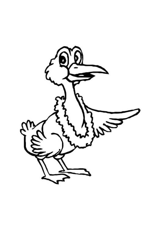 malvorlage vogel  ausmalbild 10770