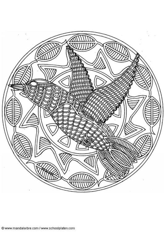 Malvorlage Vogel | Ausmalbild 18710.