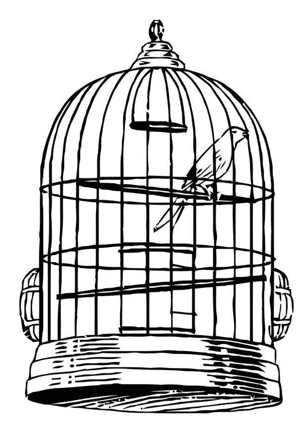 Malvorlage Vogel im Käfig | Ausmalbild 20684.