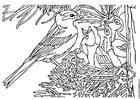 Malvorlage  Vogel mit Nest