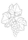 Malvorlage  Weinranke mit Trauben