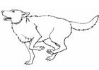 Malvorlage  Wolf