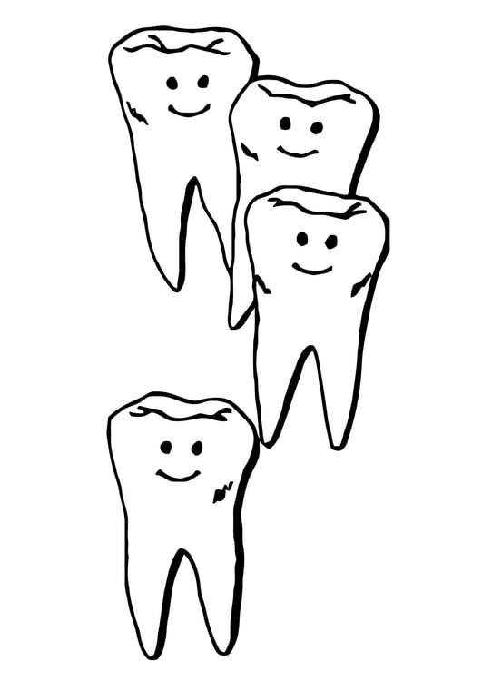 Malvorlage Zähne | Ausmalbild 11861.