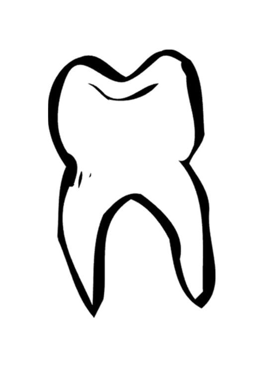 Malvorlage Zahn Ausmalbild 9493