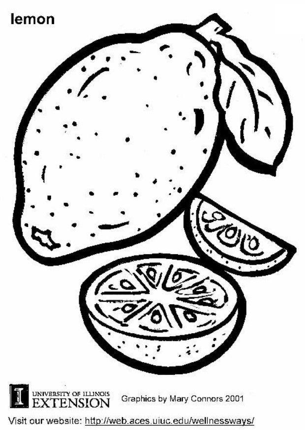 Malvorlage Zitrone | Ausmalbild 5814.